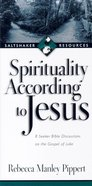 Saltshaker Resources: Spirituality According to Jesus Paperback