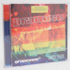 Promise (Worship Experience Series) CD