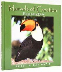 Breathtaking Birds (Marvels Of Creation Series)