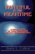 Faithful in the Meantime Paperback