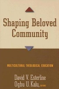 Shaping Beloved Community