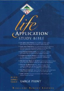 KJV Life Application Study Large Print Burgundy Indexed