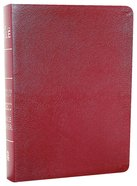 Amplified Everyday Life Bible, the Burgundy Bonded Leather