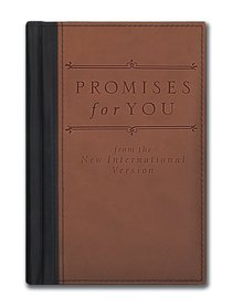 Promises For You (Deluxe Niv)