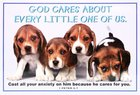 Poster Small: God Cares About Every Little One of Us Poster
