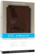 ESV Thinline Bible Chestnut Diamond Imitation Leather