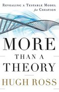 More Than a Theory Hardback