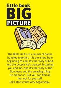 Little Book: Big Picture (25 Pack)