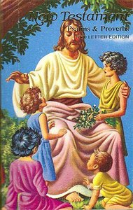 KJV Childrens Rainbow Illustrated New Testament Bible With Psalms & Proverbs