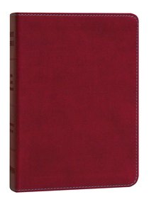 KJV Hendrickson Compact Reference Large Print Berry
