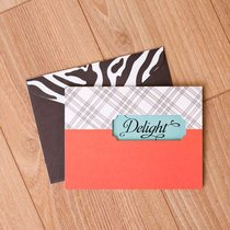Sassy and Sophisticated: Note Cards, Blank Delight