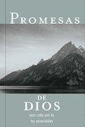 Promesas De Dios Para Cada Una De Tus Necesidades (God's Promise For Your Every Need) Paperback