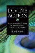 Divine Action Paperback