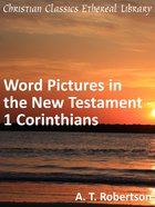 Word Pictures in the New Testament - 1 Corinthians (Word Pictures In The New Testament Series) eBook