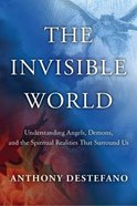 The Invisible World Paperback