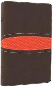 NIV Boys Bible Brown/Orange (Black Letter Edition)