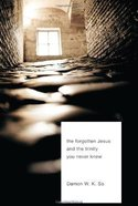 The Forgotten Jesus and the Trinity You Never Knew eBook