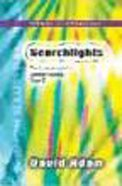 Year C Sermon Illustrations (Searchlights Common Worship Programme Series) Paperback
