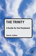 The Trinity (Guides For The Perplexed Series) Paperback