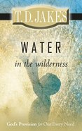 Water in the Wilderness eBook