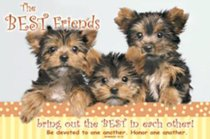 Poster Small: The Best Friends
