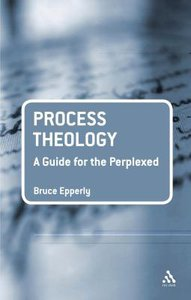 Process Theology (Guides For The Perplexed Series)