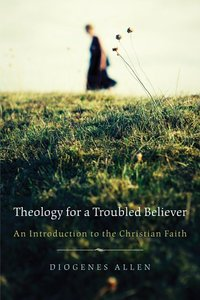 Theology For a Troubled Believer
