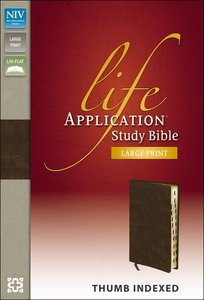 NIV Life Application Study Large Print (Red Letter Edition)