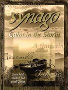 Calm in the Storm (Leader Guide) (Synago Small-group Resources Series) Paperback