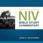 NIV Compact Commentary Hardback