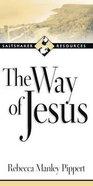 Saltshaker Resources: The Way of Jesus Paperback