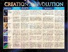 Wall Chart: Creation and Evolution (Laminated)