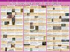 Wall Chart: Archaeology and the Bible Old Testament (Laminated)