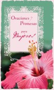 Oraciones Y Promesas Para Mujeres (Prayers And Promises For Women) Paperback
