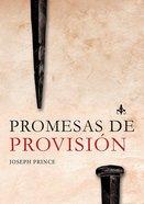 Promesas De Provision (Provision Promises) Paperback