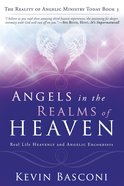Angels in the Realms of Heaven (Dancing With Angels Series) eBook