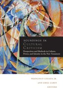 Soundings in Cultural Criticism Paperback