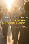 God in the World Paperback