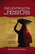 Encuentros Con Jesus (Encounters With Jesus) Paperback