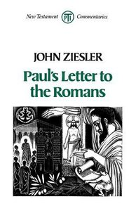 Pauls Letter to the Romans (Trinity Press International Nt Commentary Series)