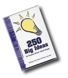 250 Big Ideas For Purpose Driven Small Groups Paperback