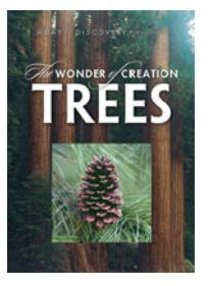 Wonder of Creation, the - Trees