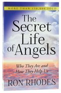 The Secret Life of Angels Paperback