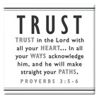 Black and White Series Magnet: Trust Novelty