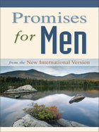 Promises For Men eBook