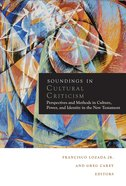 Soundings in Cultural Criticism eBook