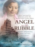 Angel in the Rubble eBook