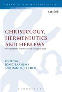 Christology, Hermeneutics, and Hebrews (Library Of New Testament Studies Series) Paperback
