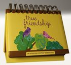 Daybrighteners: True Friendship (Padded Cover) Spiral