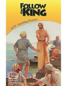 Dlc A3: Follow the King Teaching Pictures Ages 8-10 (Discipleland Level 3, Ages 8-10, Qtrs Abcd Series)